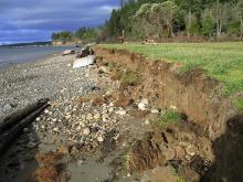 bulkhead erosion